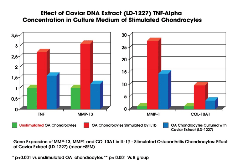 Caviar DNA Extract can significantly lower levels of inflammatory markers like Tumour Necrosis Factor-Alpha