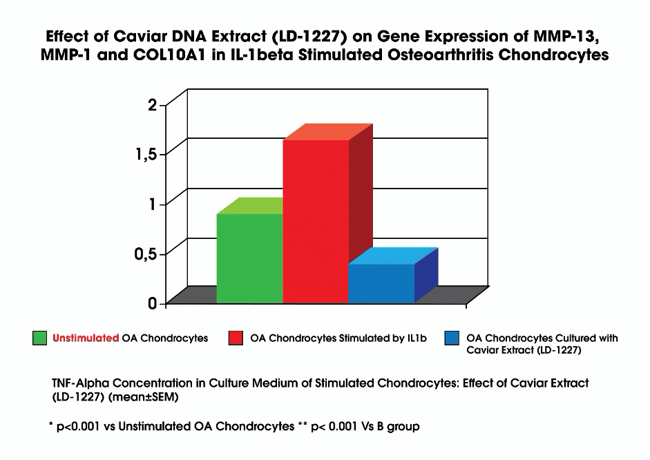 caviar dna extra on gene expression in stimulated osteoarthritis chondrocytes